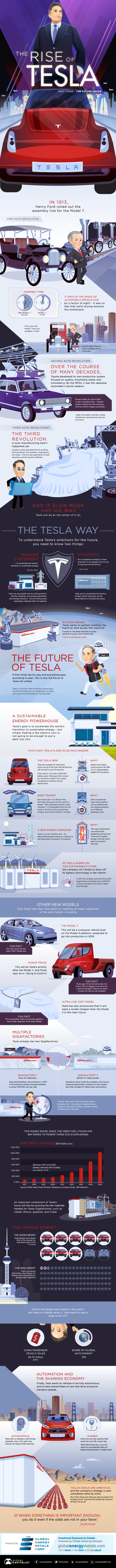 tesla-Part 3 -vision-infographic