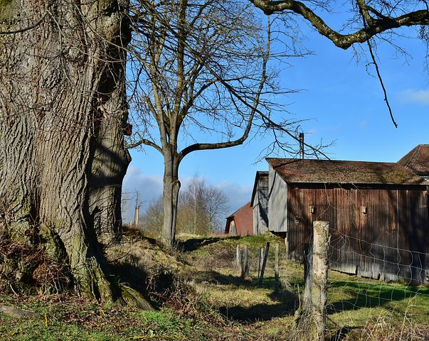 landscape-3417201__480 homestead